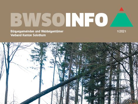 Titel_bwso-info-2021-01