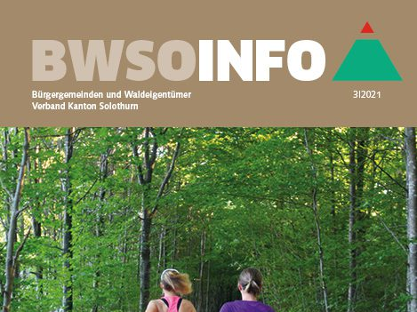 BWSo-Info_3-2021 _Titelblatt